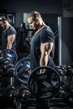 Bodybuilder στην κατάρτιση Στοκ Εικόνα