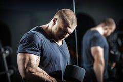 Bodybuilder στην κατάρτιση Στοκ εικόνα με δικαίωμα ελεύθερης χρήσης