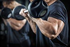 Bodybuilder στην κατάρτιση Στοκ Φωτογραφία