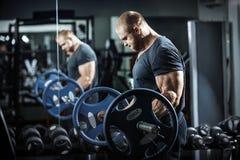 Bodybuilder στην κατάρτιση Στοκ φωτογραφίες με δικαίωμα ελεύθερης χρήσης
