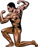 Bodybuilder 01. Illustration of a bodybuilder in a kneeling pose, flexing his biceps and back muscles during a competition Stock Image