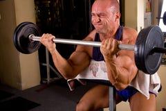Bodybuilder Royalty Free Stock Photos