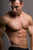 Bodybuilder. Portrait of young bodybuilder man on grey background Royalty Free Stock Images