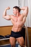 bodybuilder στοκ φωτογραφία με δικαίωμα ελεύθερης χρήσης