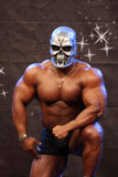 Bodybuilder Fotos de Stock Royalty Free