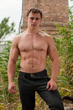 Bodybuilder imagenes de archivo