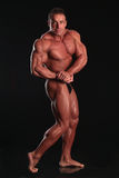 The bodybuilder. Perfect bodybuilder most muscular pose stock images