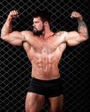 Bodybuilder Royalty Free Stock Photography