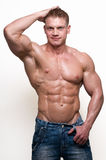 Bodybuilder fotografia de stock royalty free