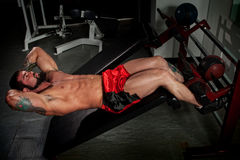 Bodybuilder. Working out in a gym Royalty Free Stock Photos