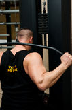 Bodybuilder. Back, working out at the gym royalty free stock photo