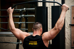 Bodybuilder. Back, working out at the gym royalty free stock images