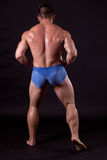 Bodybuilder Royalty Free Stock Photos