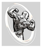 Bodybuilder. Illustration of a bodybuilder in a kneeling pose, flexing his biceps and back muscles during a competition Stock Photos
