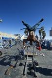 Bodybuilder Στοκ εικόνες με δικαίωμα ελεύθερης χρήσης