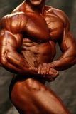 Bodybuilder. Side Chest royalty free stock image