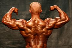 Bodybuilder. Back Double Biceps stock photography