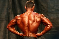 Bodybuilder. Back stock images