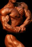 Bodybuilder Immagine Stock