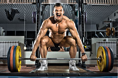 Bodybuilder Images stock