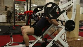 Bodybuilder stock video footage
