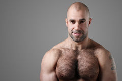Bodybuilder fotos de stock royalty free
