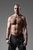 Bodybuilder immagini stock libere da diritti