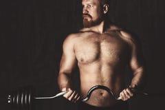 Bodybuilder Allenamento dei bilancieri di Deadlift Immagini Stock Libere da Diritti