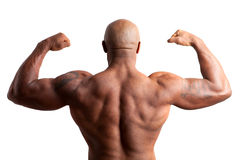 Bodybuilder with Arms Crossed Royalty Free Stock Image