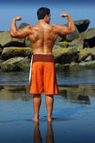 Bodybuilder back stock photos