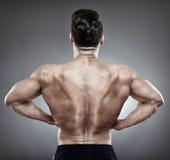 Bodybuilder back Royalty Free Stock Photo