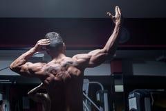 Bodybuilder from back Stock Images