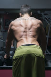 Bodybuilder from back Royalty Free Stock Photo