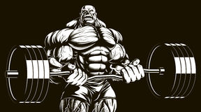Bodybuilder with barbell. Vector illustration, bodybuilder doing exercise with barbell for biceps Stock Images