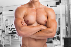 Bodybuilder bodybuilding chest muscles fitness gym upper body bu Royalty Free Stock Photography