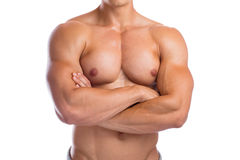 Bodybuilder bodybuilding chest muscles upper body builder buildi Stock Photo