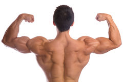 Bodybuilder bodybuilding flexing muscles posing back biceps stro. Ng muscular young man isolated on a white background Stock Photos