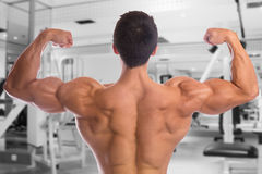 Bodybuilder bodybuilding flexing muscles posing gym back biceps. Strong muscular young man fitness studio Royalty Free Stock Images