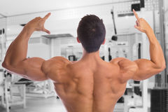 Bodybuilder bodybuilding muscles back gym strong muscular Stock Photo