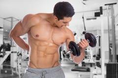 Bodybuilder bodybuilding muscles body builder building gym power Stock Image