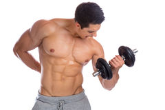 Bodybuilder bodybuilding muscles body builder building power str. Ong muscular young man dumbbell biceps training isolated on a white background stock photography