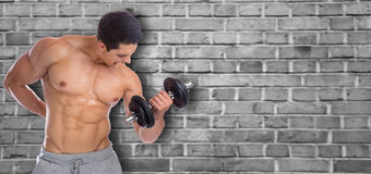Bodybuilder bodybuilding muscles copyspace copy space body build Royalty Free Stock Photos