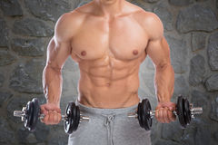 Bodybuilder bodybuilding muscles dumbbells biceps training power. Strong muscular man workout Royalty Free Stock Images