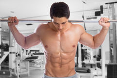 Bodybuilder bodybuilding muscles gym barbell abs strong muscular. Man fitness studio Stock Image