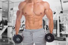 Bodybuilder bodybuilding muscles upper body gym strong muscular. Man dumbbells abs training fitness studio Royalty Free Stock Photography