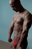 Bodybuilder calvo fotografie stock