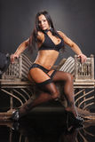 Bodybuilder class Royalty Free Stock Photos
