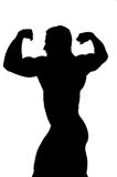 Bodybuilder cutout Royalty Free Stock Photography