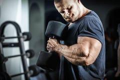 Bodybuilder dans la formation Photographie stock libre de droits