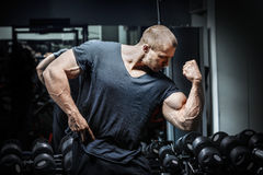 Bodybuilder dans la formation photos libres de droits